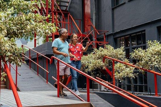 开普敦私人旅游:区,乡镇和Braai