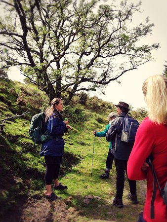 Dartmoor's Daughter: Learning about some of natures parlour.