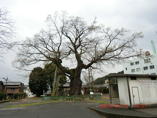 Daisendan of Kotohira Town
