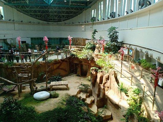 Zoo Negara: Zoo Negara