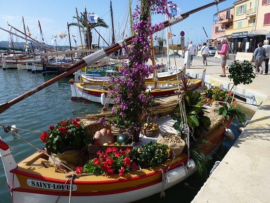 Port Sanary sur Mer: le retour des pointus