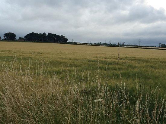East Lothian照片