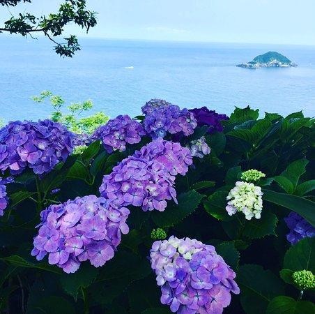 Togenkyo Point