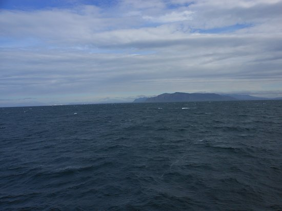 Whale Watching in Luxury from Reykjavik: out at sea. Great view of peninsula