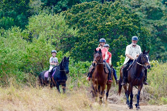 Zomba, Malawi: The end of a wonderful ride with good friends and good horses.   What more could you ask for?