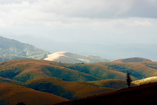 Zomba, Malawi: Some of the views seen on the Viphya mountain.