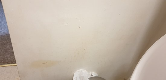 Anchorage Hotel : Stains around the wall in the bathroom