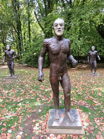 Bronze manhood's at the YSP - Wakefield (23/Sep/18).