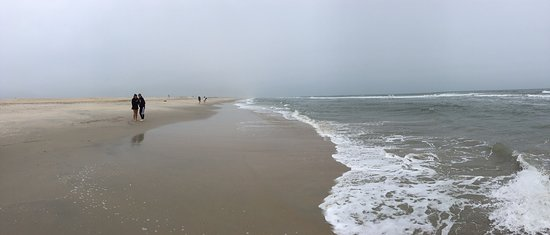 Assateague Island, VA: Overcast and blustery day at the seashore