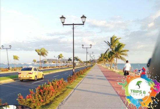 Amador Causeway (Calzada de Amador): El Causeway de Amador es un lugar único en Panamá, pintoresco y hermoso que captura la atención de locales y turistas de todo el mundo que disfrutan de Panamá en vacaciones y donde encontrarán muchas actividades y lugares para disfrutar junto a familia y amigos. Encuentra aquí todo lo que te ofrece El Causeway de Amador.