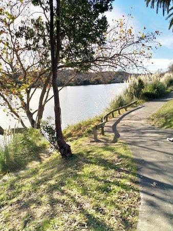 Wairoa River Walkway