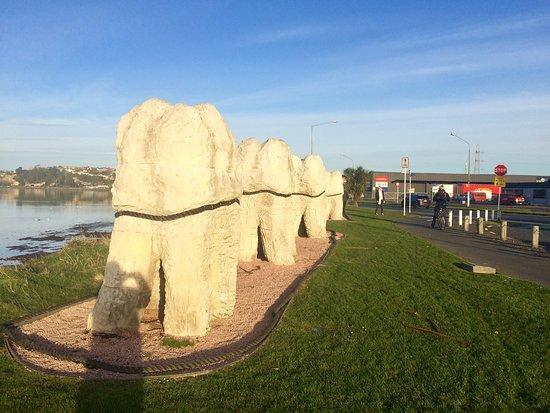 Harbour Molars: A bit of fun