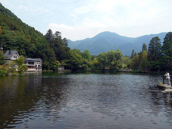 土曜昼の金鱗湖(写真奥の方に天祖神社の鳥居が写っています)