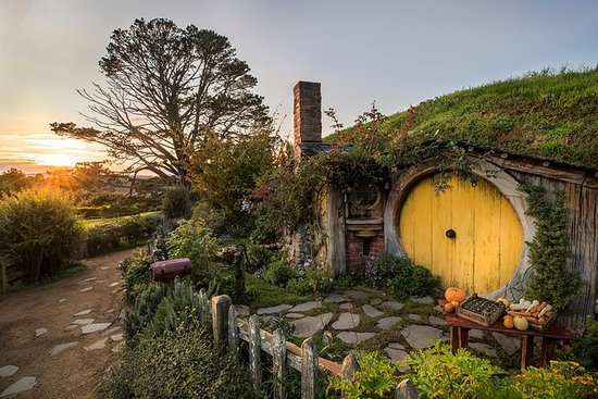 Hobbiton Movie Set & Waitomo Caves...