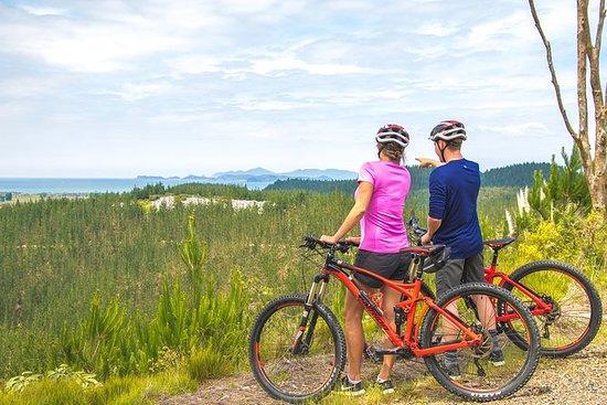怀唐伊山地自行车公园体验