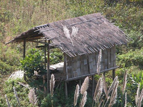 Japa Tour: resting place