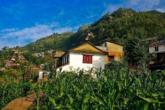 8 Day Sirubari (First Home stay in Nepal) with Kathmandu and Pokhara Tour: 8 Days Sirubari (First Home stay in Nepal) with Kathmandu and Pokhara Tour