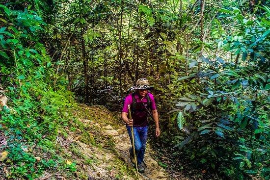 Trekking To Minca