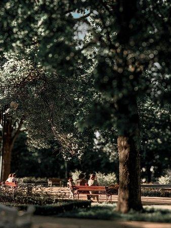 Stary Ogród Park