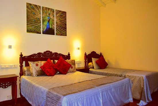 kingfisher family room - Изображение Asian Jewel Boutique Hotel, Хикадуа - Tripadvisor