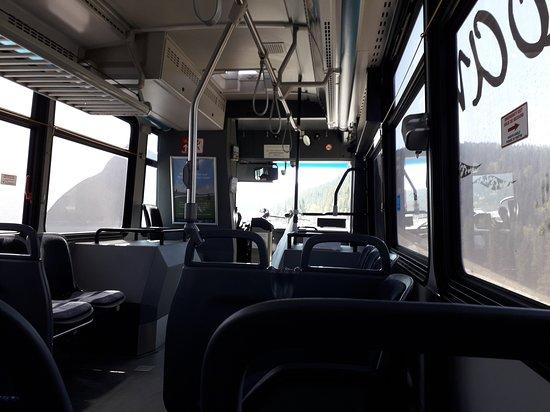Roam Public Transit Service