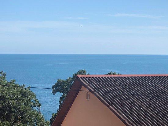Вид , открывающийся с веранды, а также с балкона