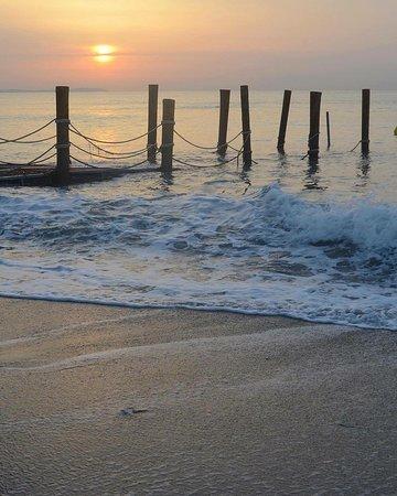Playa Montroig Camping Resort: 1km de Playa con acceso directo