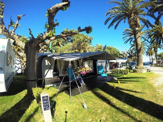 Playa Montroig Camping Resort: Parcelas