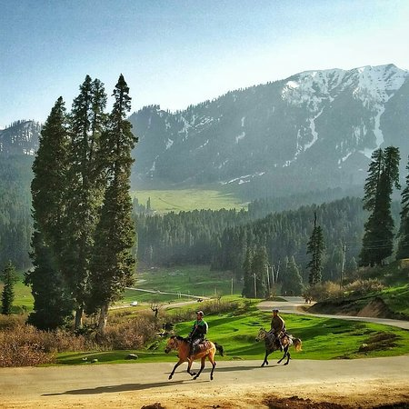 Budgam District, อินเดีย: Obsolete the motors and ride the horses around the evergreen land ! www.countrysidekashmir.com