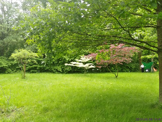 Japanischer Garten