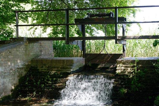 Harpenden, UK: Batford Springs Nature Reserve