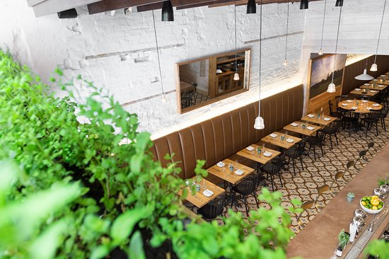 Meadowsweet: A view of the restaurant from our indoor herb garden.