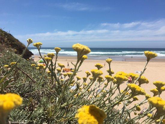 Odeceixe Beach ภาพถ่าย