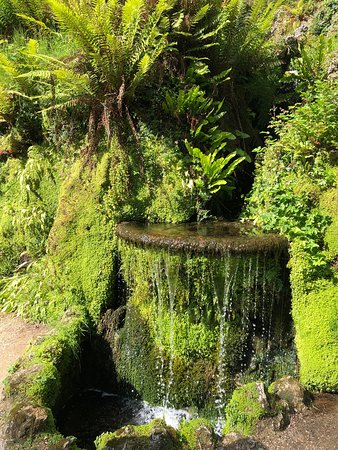 Powerscourt House: This lovely estate held Some of the most beautiful gardens that I have ever seen