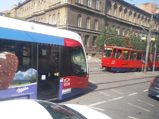 Belgrado, Serbia: Trams