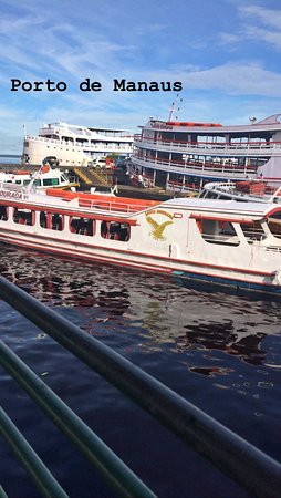 Combo Tour: Swim with Dolphins, Visit an Indian Village and Meeting of the Waters: Porto de Manaus