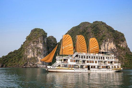 Ancora Cruises