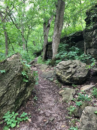 Hiking Haven In Town