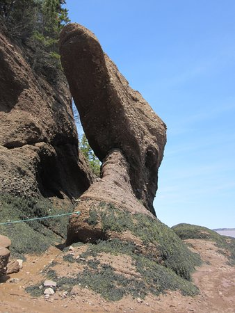 Hopewell Rocks Admission: One of the Hopewell Rocks
