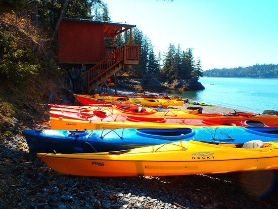 Homer Ocean Charters: Guided Sea Kayaking