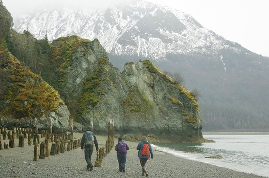 Homer Ocean Charters: Guided Interpretive Hiking
