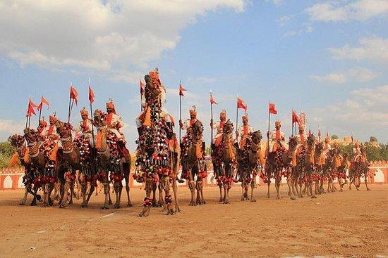 Rajasthan Trip Advisor