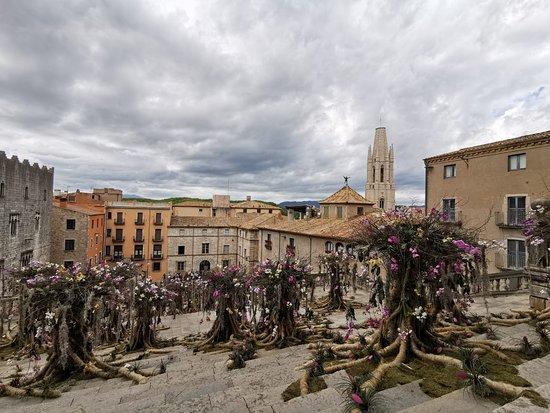 Placa de la Catedral de Girona