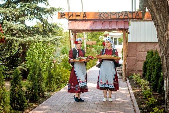 Vinuri de Comrat R. Moldova Gagauzia