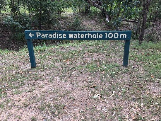 Massive! Paradise Waterhole