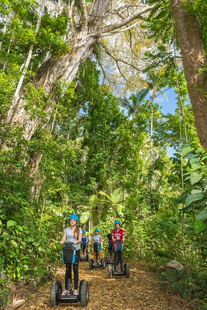 Discover the wonders of the rainforest on the Segway Rainforest Discovery.