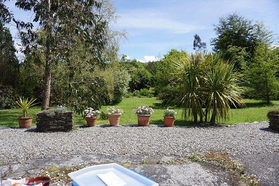 Main garden sitting area