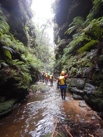 Eagle Rock Adventures Sydney 2019 All You Need To Know