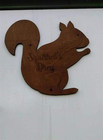 Squirrel Wood Campsite照片
