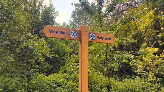 Alton, UK: The Wey Walk offers quiet walks in the Flood Meadows